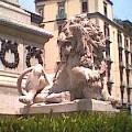 I leoni di Piazza dei Martiri - 1820